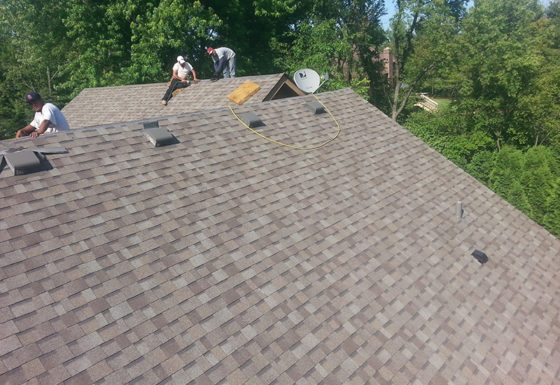 Roof Project Sixteen